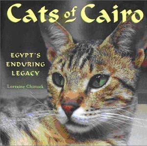 cats_of__Cairo.JPG